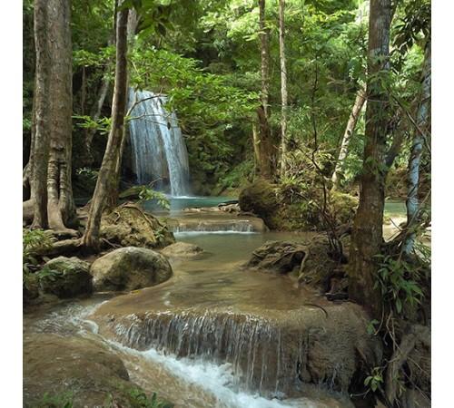 Pre-Sized Jungle Background